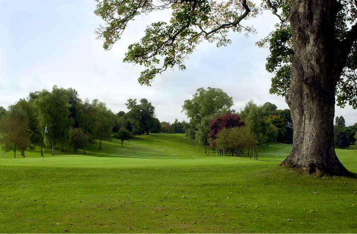 OSWESTRY_GC_18_GREEN_TREE_ken_web.jpg